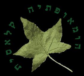 שלומי זילברמן - הומאופתיה קלאסית 24/7