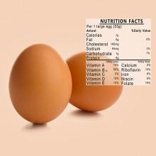 ביצה – לאכול או לא לאכול?!