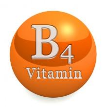 ויטמין B4