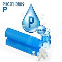 Phosphorus (זרחן)